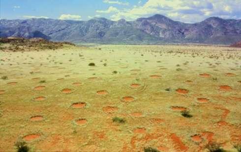 Feenkreise_Namibia