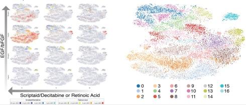 samples_clustering