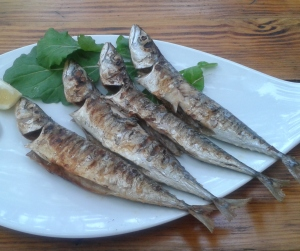 Fish_shaped_plates